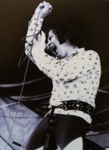 Jazz BIlzen '73 - The Troggs