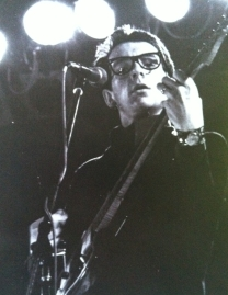 Jazz Bilzen '77 - Elvis Costello