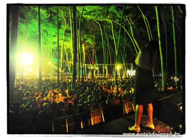 Reggae Geel 2013 (c) Peter De Jongh
